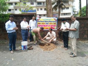 World Environment Day Tree Plantation Program
