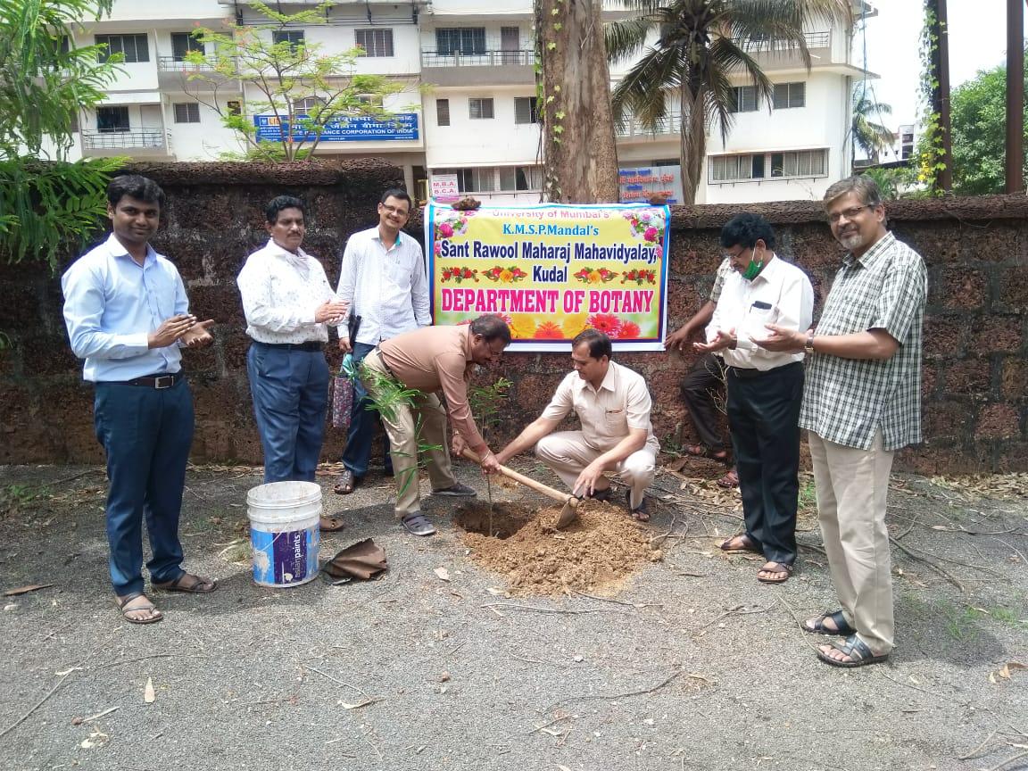 World Environment Day Tree Plantation Program